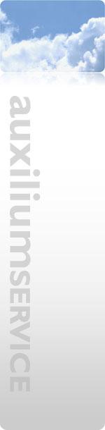 Auxilium Service Zwickau - Organisation, Verwaltung und Betreuung von Einzelunternehmen und Freelancer